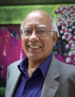 Professor Sunil Sinha recipient 2014 Clifford G. Shull Prize